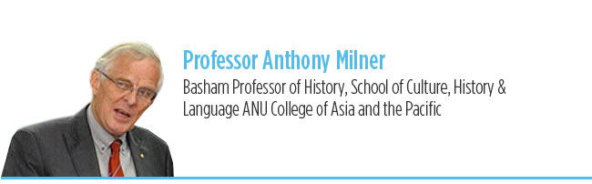 Professor Anthony Milner