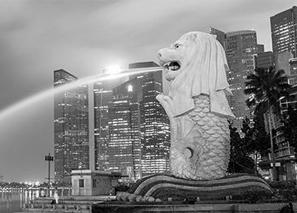 img-ecosnap-singapore.jpg