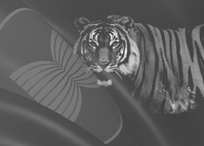 future asean conservation
